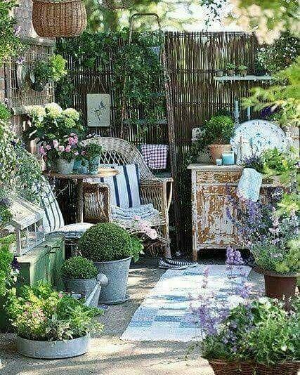 Cabinet de curiosité jardin brocante