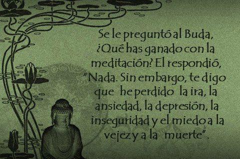 Se le preguntó a Buda. ¿Qué has ganado con la meditación? Él respondió: Nada, sin embargo te digo que he perdido la ira, la ansiedad, la depresión, la inseguridad y el miedo a la vejez y a la muerte. #Citas #Frases #Candidman: