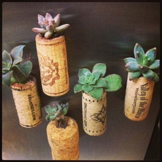 15 Natural And Handmade Living Succulent Decorations | Pinkous
