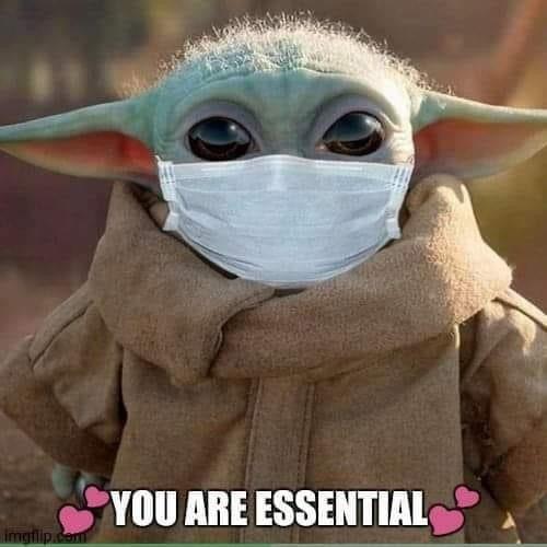 Baby Yoda You Are Essential Yoda Funny Yoda Pictures Yoda Meme