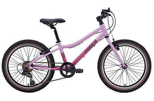Pinnacle Ash 20 Inch 2020 Kids Bike Bicycle 6 Gears Ergo Saddle