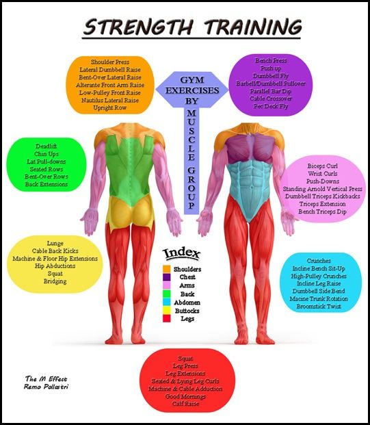 Specific Groups: Whether You Want To Build Muscle Or Strengthen Specific