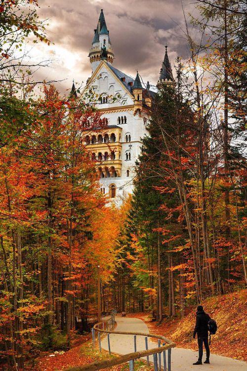 Neuschwanstein Castle Neuschwanstein Castle Autumn Scenes Autumn Scenery