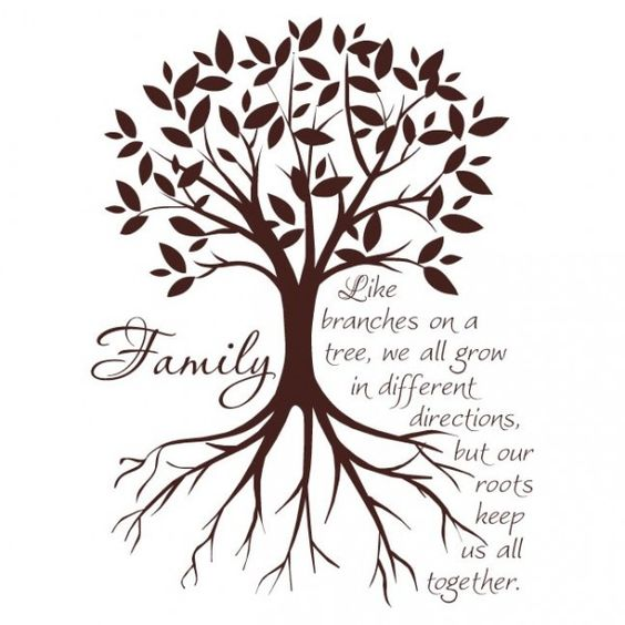 Family Like Branches Tree Quote Daily Inspiration Quotes