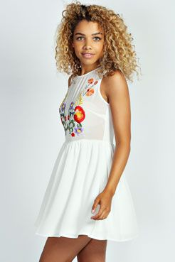 Esther Embroidered Floral Chiffon Skater Dress at boohoo.com