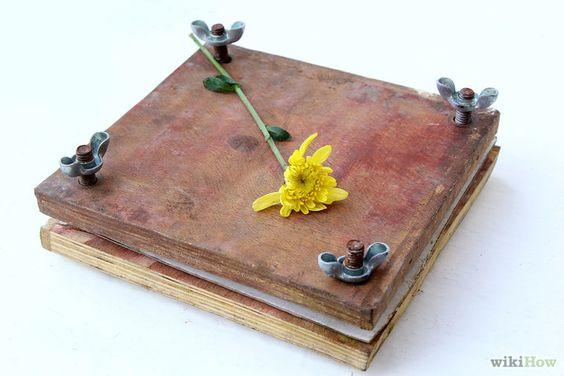 5 formas de preservar flores - wikiHow
