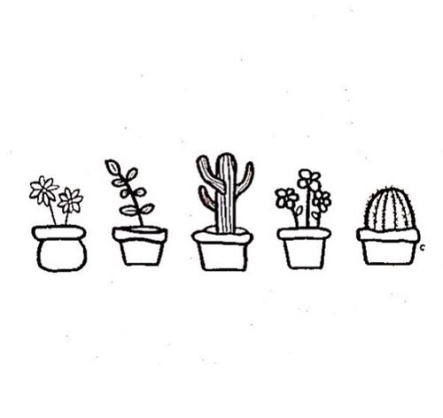 succulents drawings and simple on pinterest. Black Bedroom Furniture Sets. Home Design Ideas
