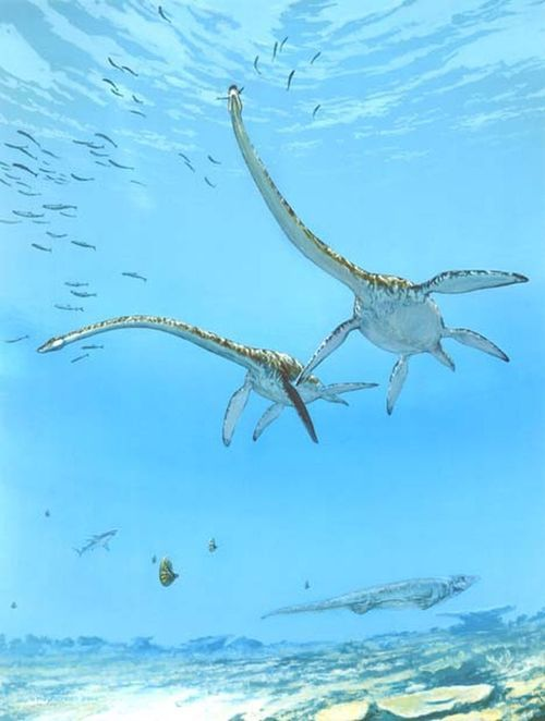 Elasmosaurus by Michael Skrepnick