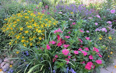 Great website for Texas gardening