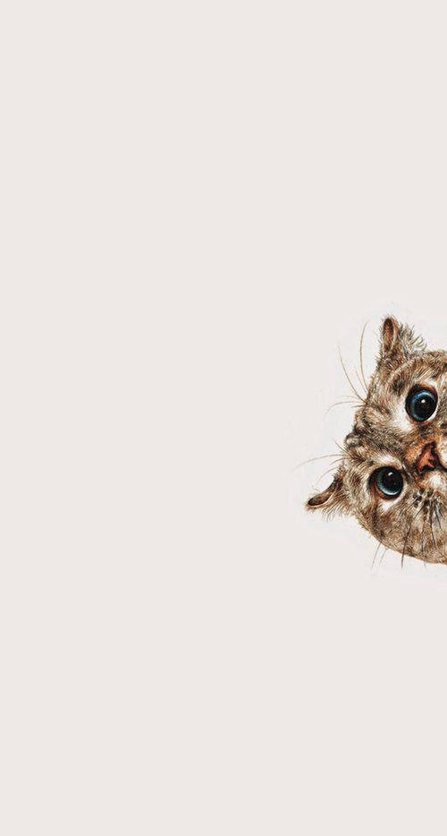miau.....   Cadê o gatinho?: