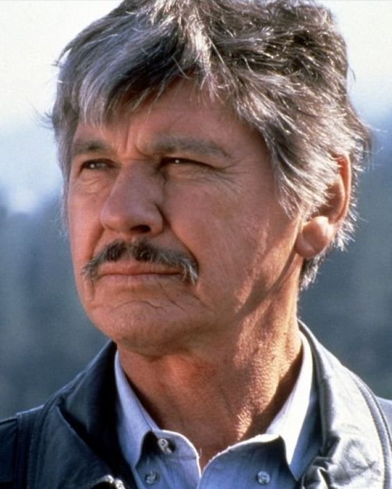 Charles Bronson (born Charles Dennis Buchinsky; November 3, 1921 – August 30, 2003) was an American film and television actor. He fought in WWII and was awarded a Purple Heart for being injured during duty.  He starred in films such as Once Upon a Time in the West, The Magnificent Seven, The Dirty Dozen, The Great Escape, Rider on the Rain, The Mechanic, and the Death Wish series. He was often cast in the role of a police officer, gunfighter, or vigilante in revenge-oriented plot lines.