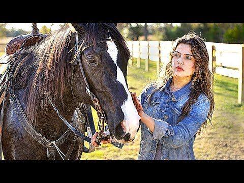 Le Cheval D Hannah Film Complet En Francais Famille Youtube Films Complets Film Film Complet En Francais