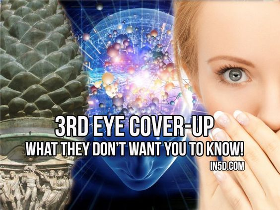 Pineal Gland's Third Eye - The Biggest Cover-up in Human History http://in5d.com/pineal-glands-third-eye-the-biggest-cover-up-in-human-history/