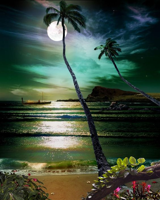 a lush, warm, tropical place - where the moon shining is just divine..