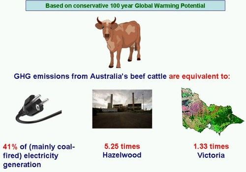 Solar Or Soy: Which is better for the planet? (Part 5) by Paul Mahony