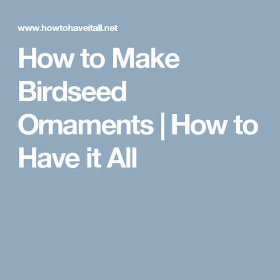 How to Make Birdseed Ornaments | How to Have it All