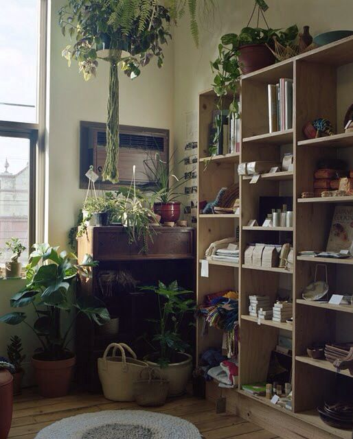 Plants and shelving