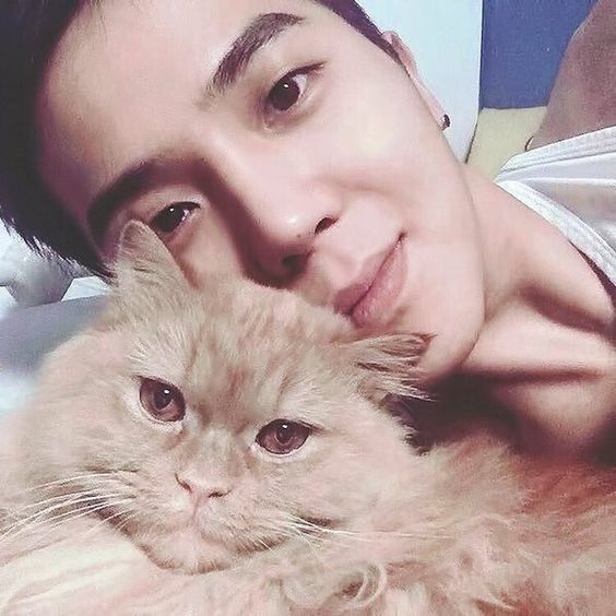 his cat is so precious << yes, so is the kitten behind the cat