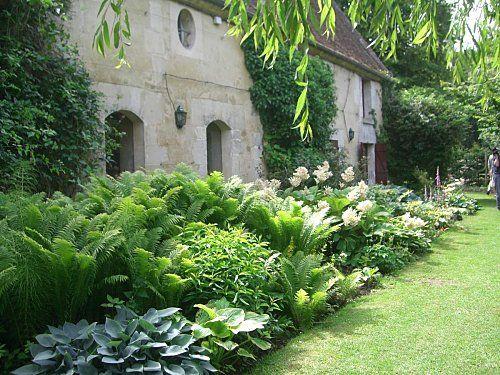 Massif haut à mi-ombre et au frais (Scènes de jardins) | Jardin d ...