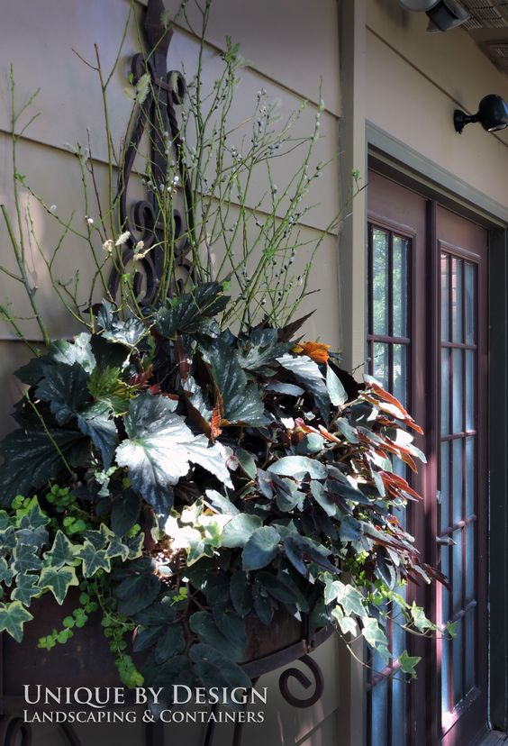 Wall Planter L Unique By Design Container Gardening