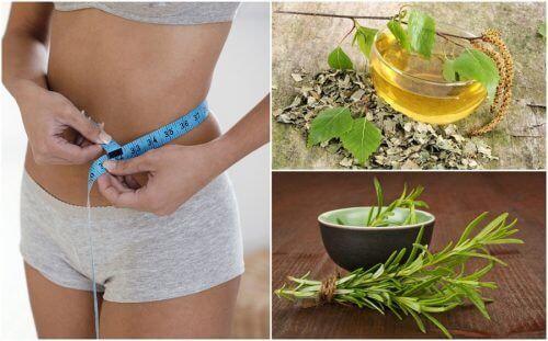 bbg recenzii de pierdere în greutate