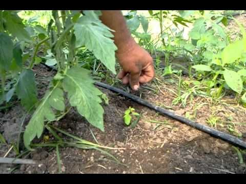 Gotejador Caseiro (Usando apenas duas ferramentas!) - YouTube