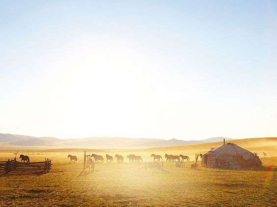 The beautiful thing about Mongolia is that images like this are available every day. You do not have to go in search of them. They exist country wide.