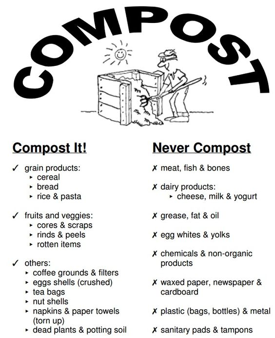 what to compost and not to garden pinterest beautiful just love and eggs. Black Bedroom Furniture Sets. Home Design Ideas