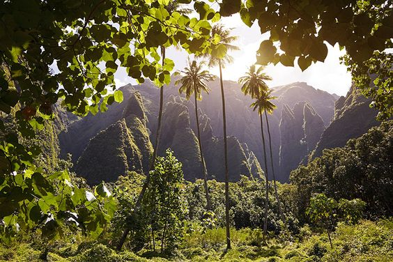 Natural Attractions For Your Honeymoon in Tahiti