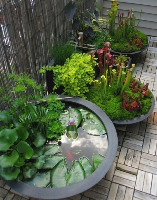 Create Your Own Outdoor Space For The Winter Weary We Can Help You With Bricks Pavers And Retainin Rustic Backyard Backyard Lighting Fire Pit Backyard