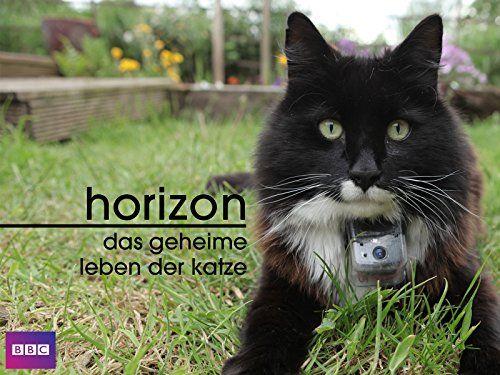 Das Geheime Leben Der Katze Dt Ov Leben Geheime Das Der Katzen Geheim Leben