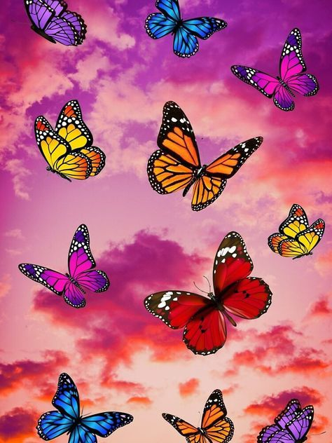 Aesthetic Pink Butterfly Iphone Wallpaper Hd Butterfly Wallpaper Iphone Butterfly Wallpaper Iphone Wallpaper Pattern Butterfly wallpaper hd 3d
