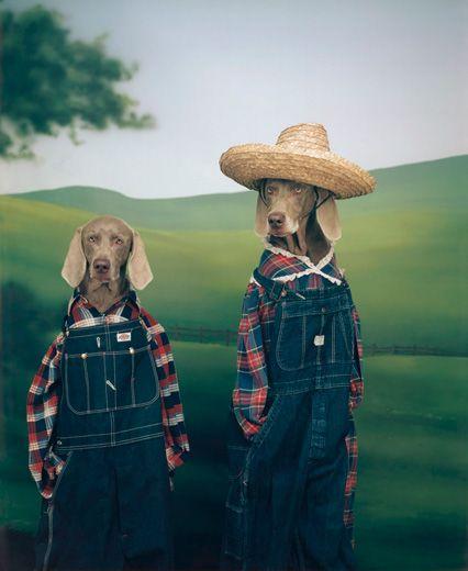 7) Starts with an F    - Farmer dogs  --William Wegman, Farmer and Son, 1994/2009