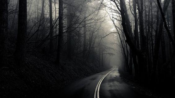 floresta negra hd - Pesquisa do Google
