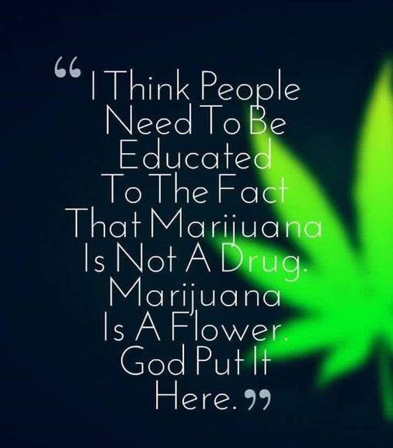 PUF_CF#DAPSTARS#highmerica #medicinalmarijuana #marijuana #maryjane #cannabis #cannabiscommunity #highlife #ganja #ganjagirls #ganjagirl #420 #420life #420girls #wakeandbake #highlife #thc #cannabisculture #loveweed #weedporn #weedgirls #weed PUF_CF#weeds