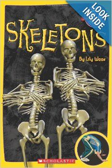 Scholastic Reader Level 2: Skeletons: Lily Wood: 9780545331487: Amazon.com: Books