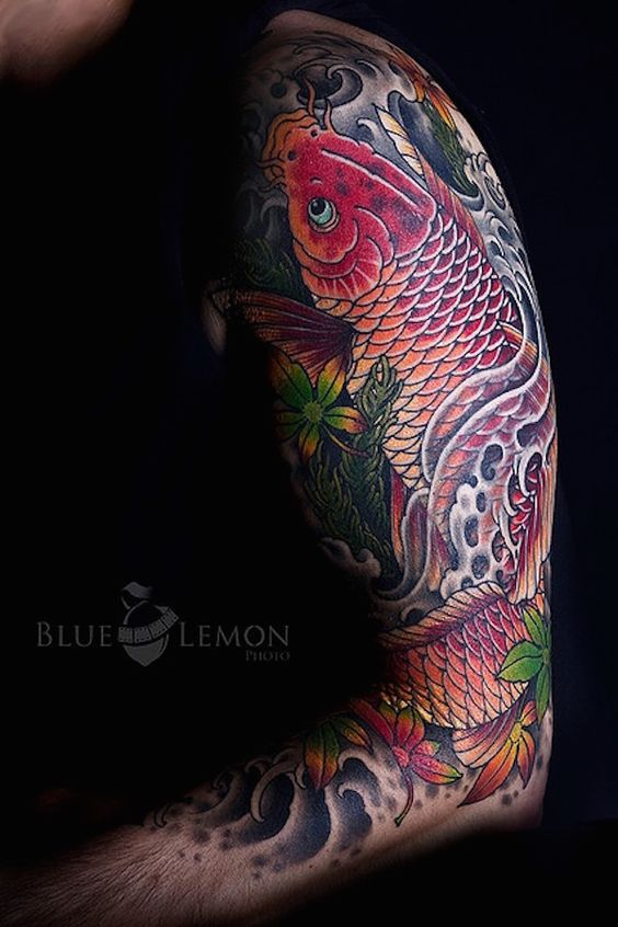 A Koi - Legend has it that a koi (carp) succeeded in ...