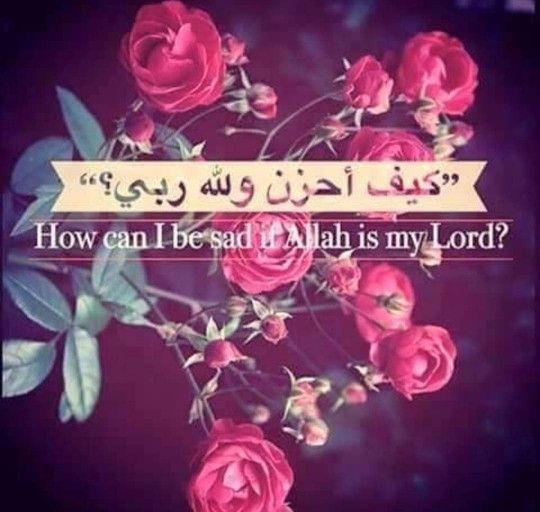 Pin On كلام في حب الله