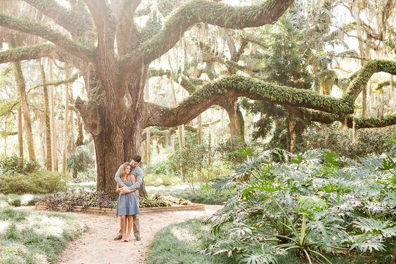 Washington Oaks Gardens Engagement | Jacksonville Fl, Engagement And  Photographers