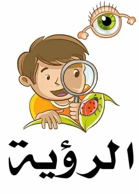 معلقات الحواس الخمسة للطور الإبتدائي Precious Children Arabic Lessons Mario Characters