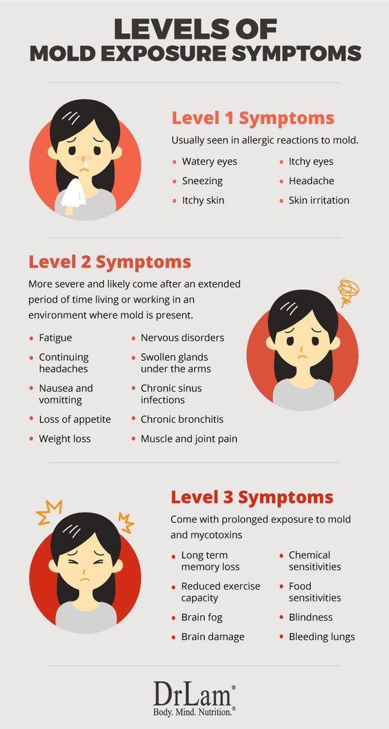 Fundamentals Of Mold Exposure Symptoms And Adrenal Fatigue Syndrome Mold Exposure Adrenal Fatigue Chronic Fatigue Syndrome Symptoms