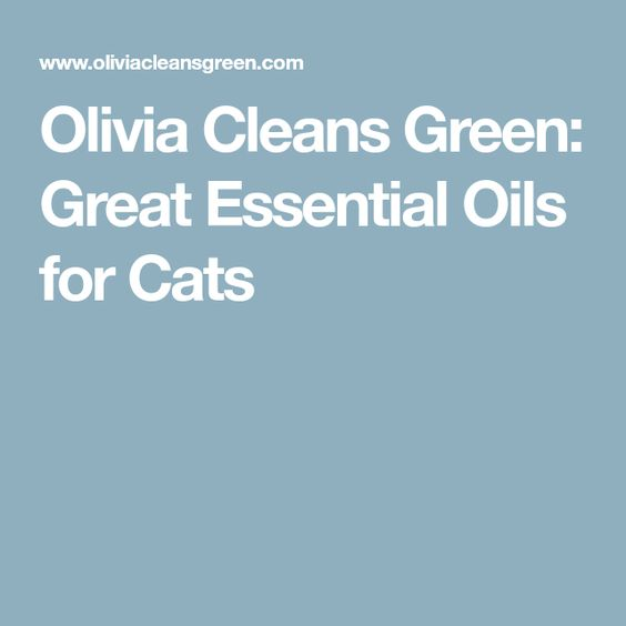 Olivia Cleans Green: Great Essential Oils for Cats
