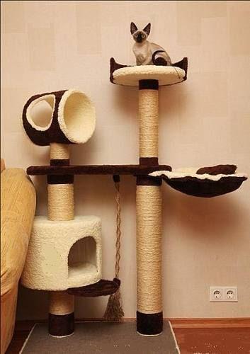 Rascador para gatos tips diy mascotas pinterest cat for Gimnasio casero