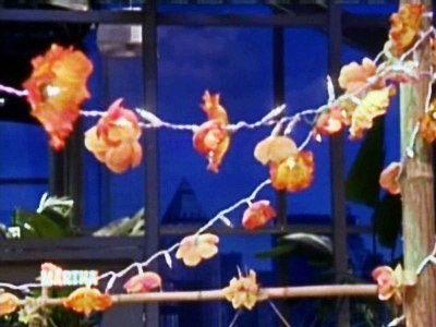 Flor Luzes do partido Vídeos | Home & Garden Como é e ideias | Martha Stewart