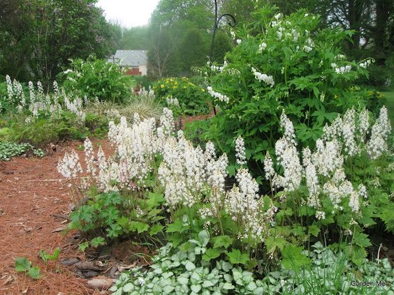 Monochromatic Spring design--white