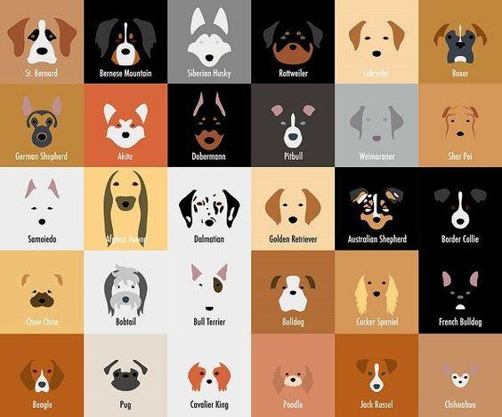 タイルが並んだおしゃれでかっこいい犬の壁紙