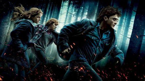 Harry Potter And The Deathly Hallows Part 1 In Hindi Harry Potter Bildschirmhintergrund Filme Nach Genre Harry Potter Film