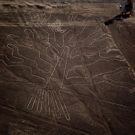 las pistas de Nazca. 6f24db66fcd97920920468f17fc05b93