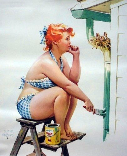 Hilda - what's a girl to do? Painting down-pipe with bird nest in the way:
