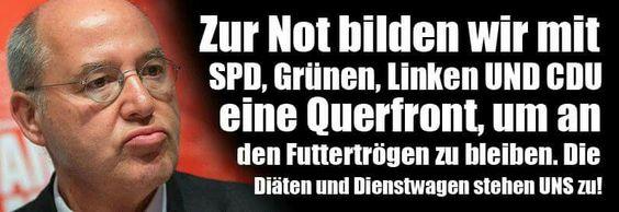 Zur Not bilden wir mit SPD, Grünen, Linken und CDU eine Querfront, um an den Futtertrögen zu bleiben. Die Diäten und Dienstwagen stehen UNS zu!